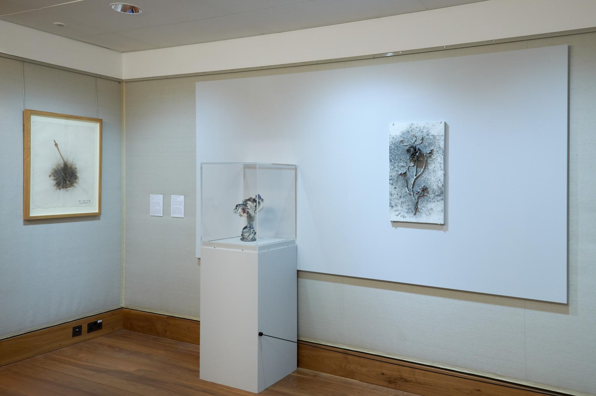 Cai Guo-Qiang Exhib-11