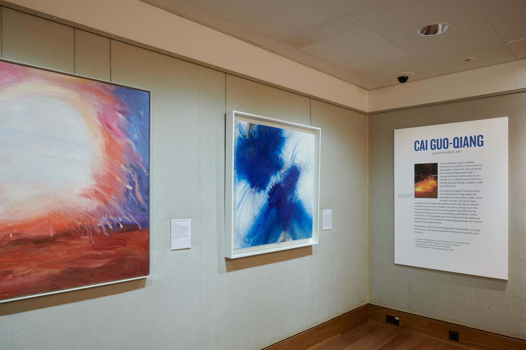 Cai Guo-Qiang Exhib-18